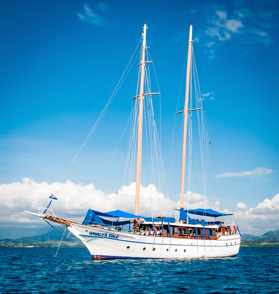 whalestale-fiji-day-adventure-cruise_prs0307